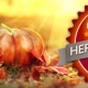 Visual PIXELGYM-Herbst-Special